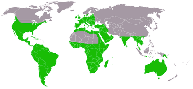 Rango territorial de los búhos